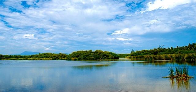 Estero Palo Verde, un hermoso parque ecológico en Colima Playas en el mundo